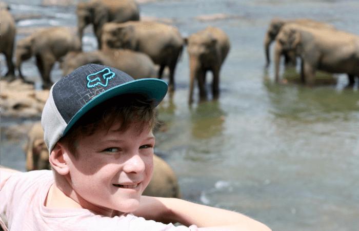 Elephants at Minneriya - Family holidays in Sri Lanka