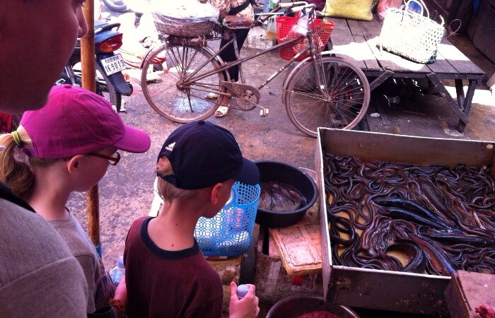 Cambodia family holidays - kids looking at eels in a street market