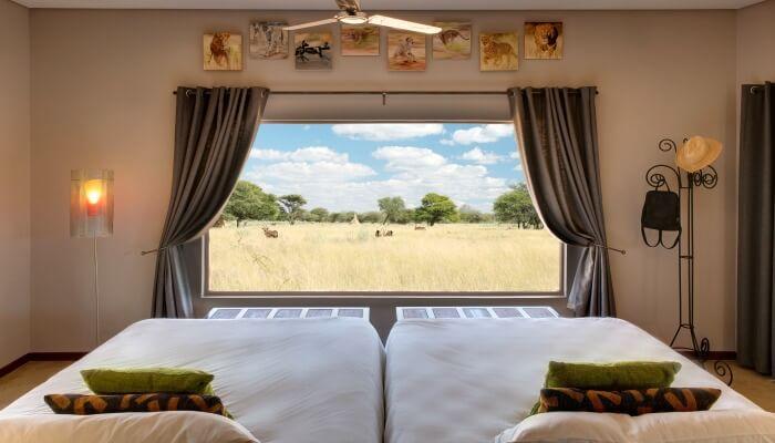 Where to stay in Namibia - Okonjima Plains Camp