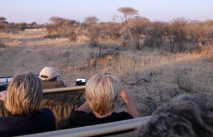Namibia family holidays - family adventure holidays - kids on safari