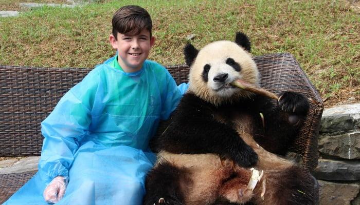 China family holidays - Chengdu Panda Research Centre
