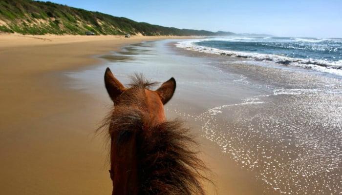 Sodwana Bay KwaZulu Natal coastline
