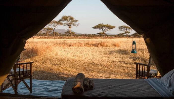 Kati Kati Tented Camp - Where to stay in Tanzania