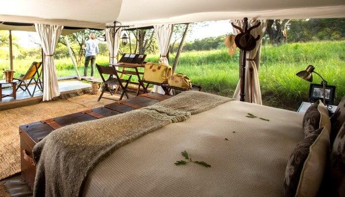 Serengeti Pioneer Camp - Where to stay in Tanzania