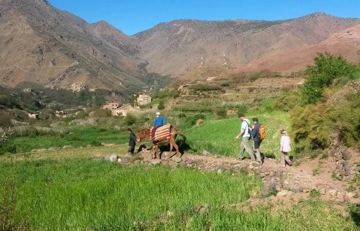 morocco-latest-134-trek