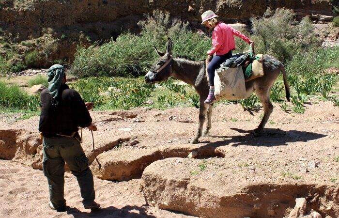 Jordan customer reviews - mule ride at Imile
