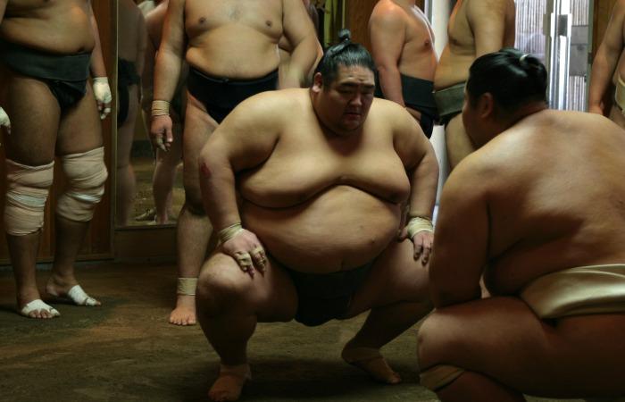 Family holidays to Japan, Sumo wrestlers training