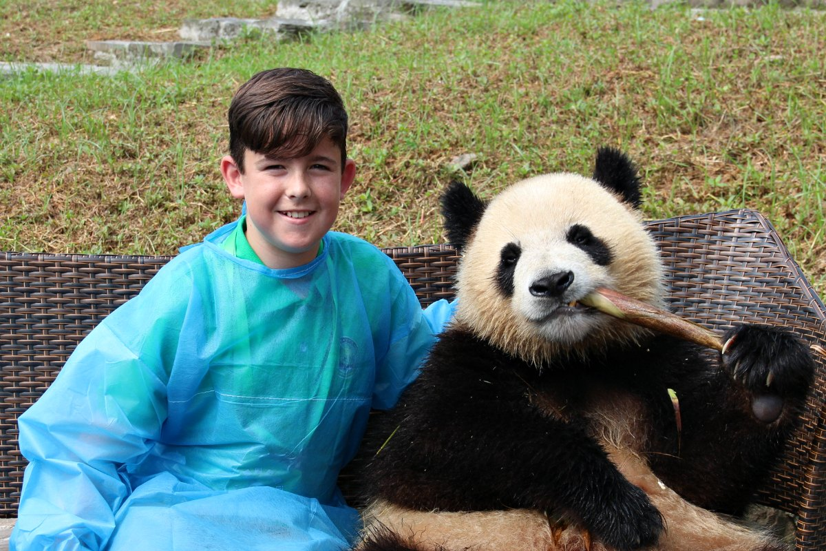 China family adventure holidays - panda meets a boy at a sanctuary