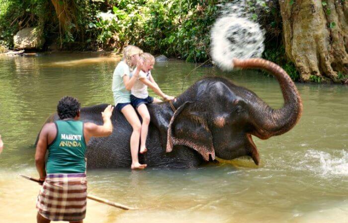 Sri Lanka with kids at MEF - elephant foundation