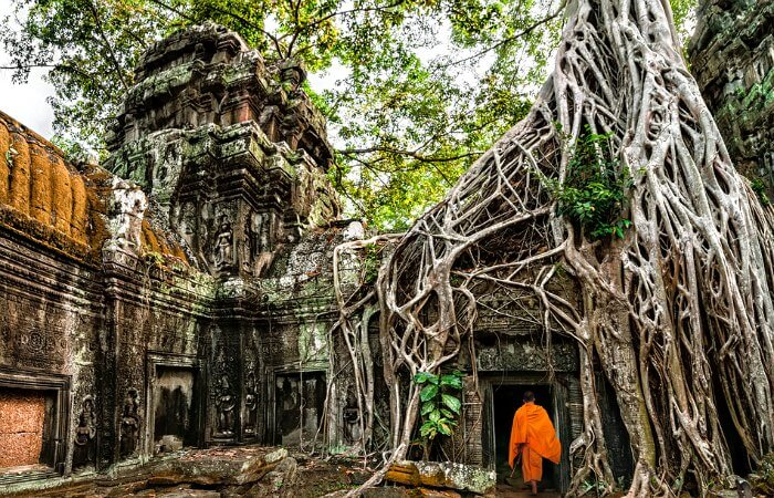 Ta Prohm temple - Cambodia photo blog