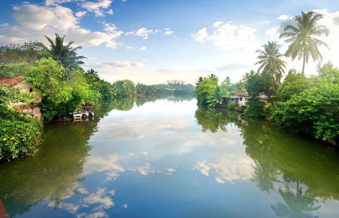 Sri Lanka with kids - stunning river scene in Sri Lanka