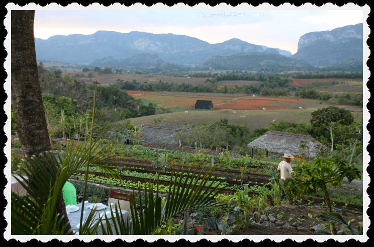 Cuba blog - Vinales - family travel