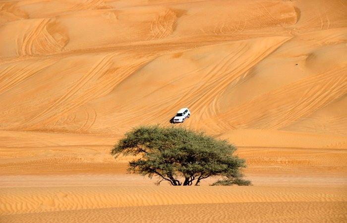 Family adventure holidays in Oman - jeep safari