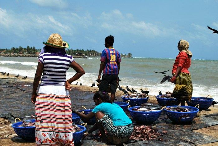 Sri Lanka beach scene - Young Photographers awards