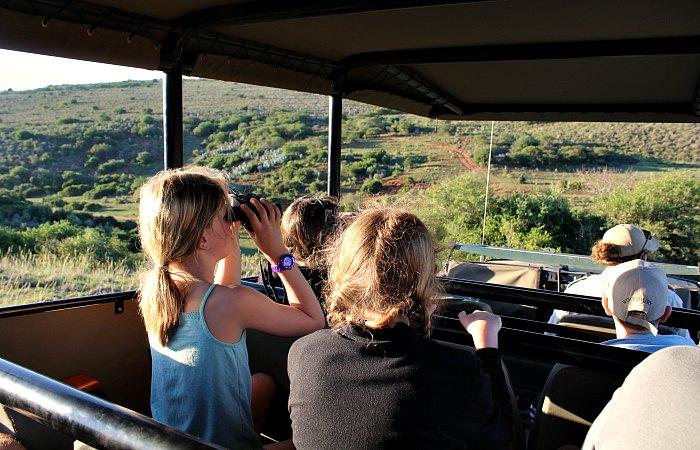 Kids looking through binoculars for game on a safari - safari diary