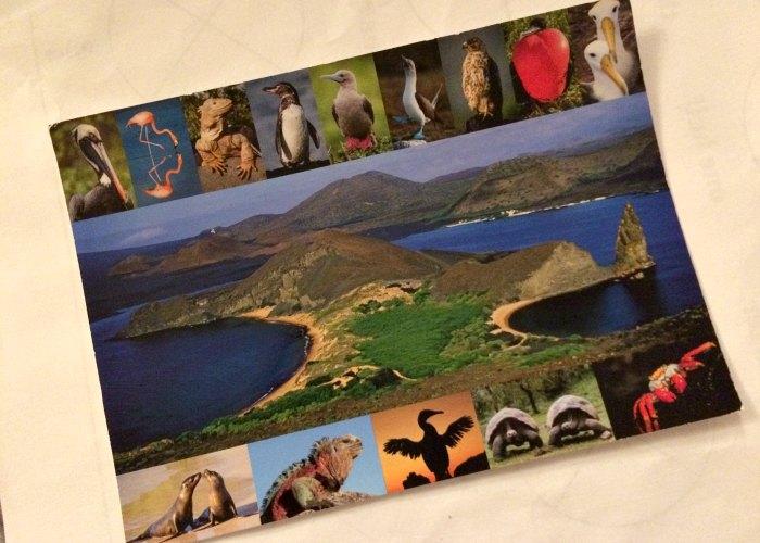 Galapagos postcard - Galapagos with family blog