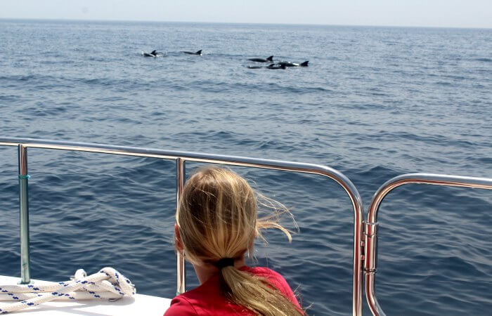 Young girl dolphin watching - Oman with kids itinerary