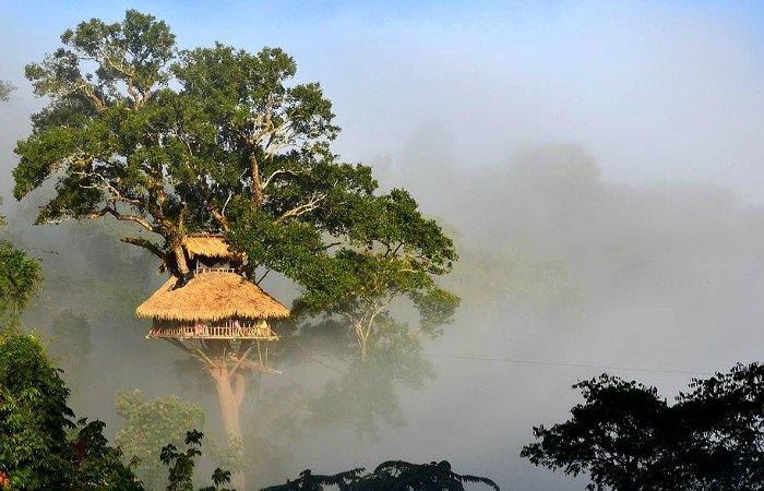 Treehouse in Laos - Laos family holiday itinerary