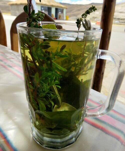 Glass of coca tea - Peru