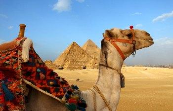 School holidays - Calendar - Egypt