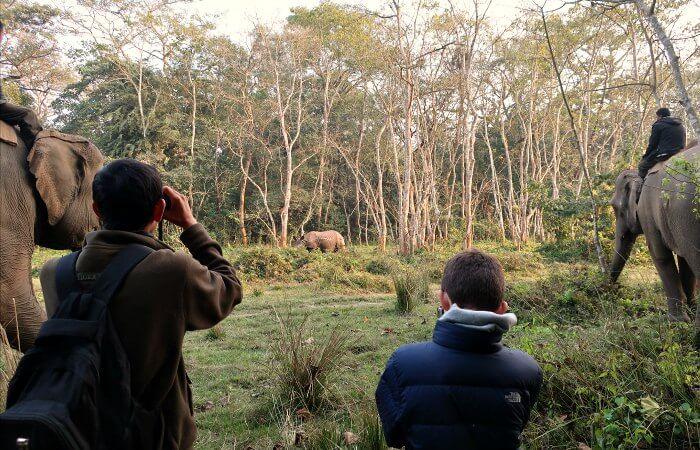 Children tracking rhino in Nepal - popular on family wildlife holidays
