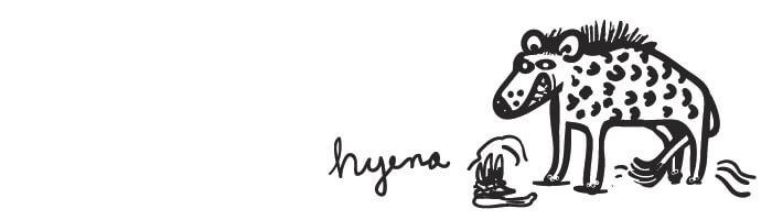 drawing of a hyena
