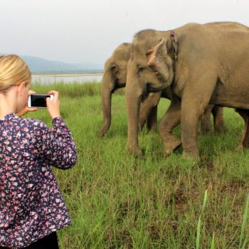 Young photographer and elephants in Nepal