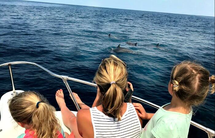Spotting dolphins when holidaying in Costa Rica with kids
