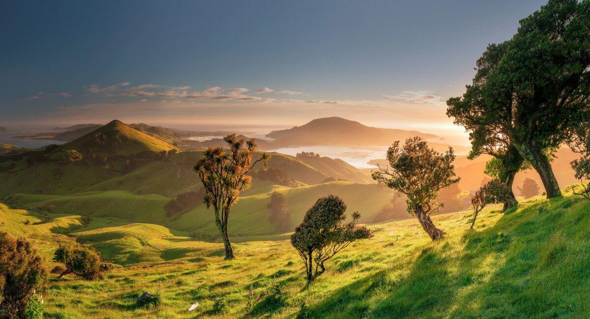 Ortego Peninsular - New Zealand in Photos