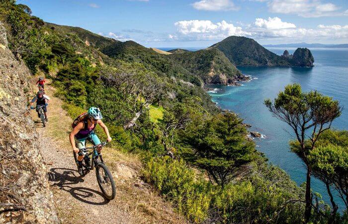 Cycling above Fletcher Bay, Coromandel, on New Zealand family holidays